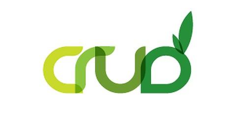 Netcurso-crud-operation-projects-using-adonet
