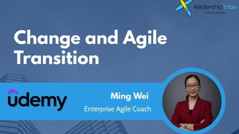 Netcurso-change-and-agile-transition