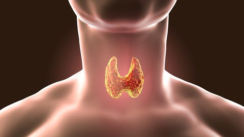 Thyroid Dysfunction Coupon