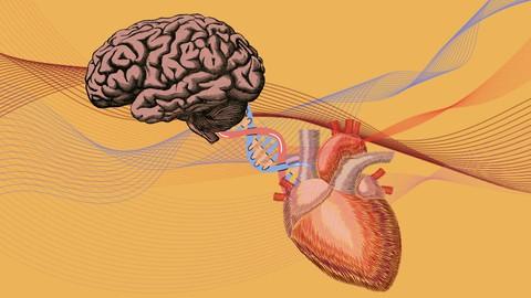 Emotional Intelligence: Intermediate Manual