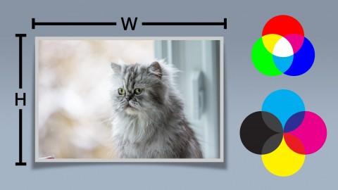 Netcurso-understanding-images