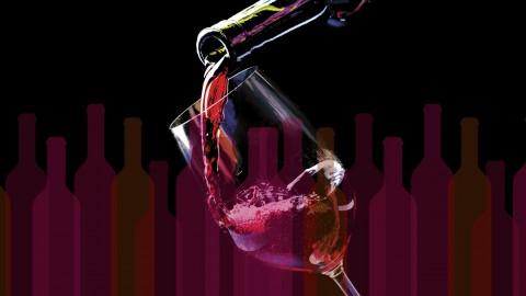 Netcurso-wine-in-one-hour
