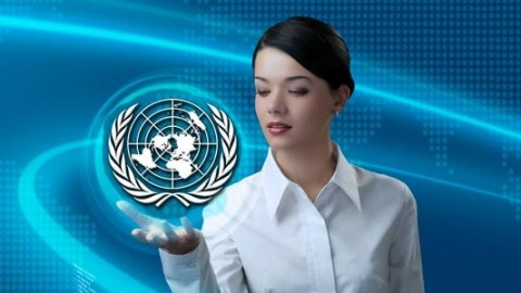 Netcurso-learn-how-to-get-contracts-or-a-job-at-the-united-nations