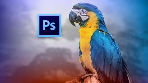 Adobe Photoshop CS6: Los Fundamentos