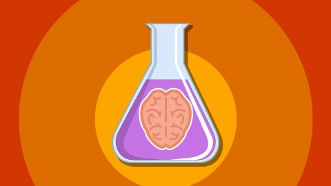 Netcurso-5-amazing-psychology-experiments