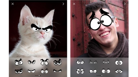 Get 10x Returns: Make a Photo App With a Top-Performing Code