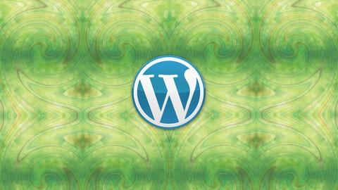 Netcurso-wordpress-easy-step-by-step