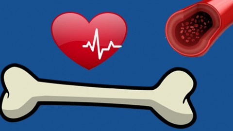 NCLEX Simplified: Cardiac, Circulatory, and Musculoskeletal