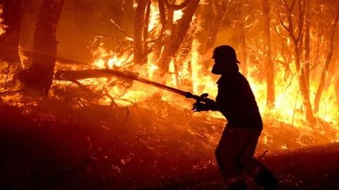 Incendios forestales: domina el INFOCA en sólo 8 vídeos.