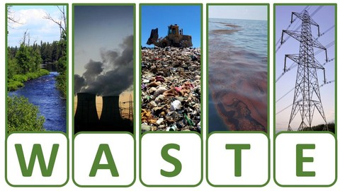 Reducing Environmental Impacts with W.A.S.T.E. Walks
