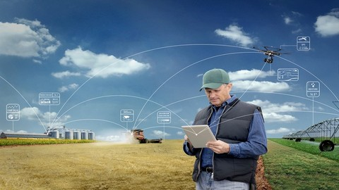 New Business Markets in the Internet of Things (IoT)