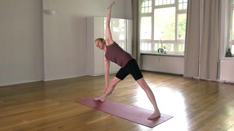 Netcurso-hatha-yoga-basics