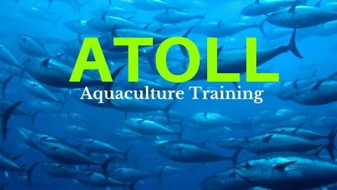 Netcurso-atoll-introduction-to-aquaculture