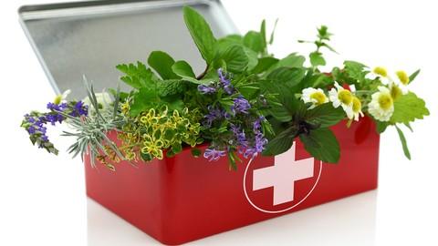 Herbalism: : First Aid Remedies [Certificate]