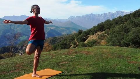 Netcurso-monitor-de-yoga-para-la-salud