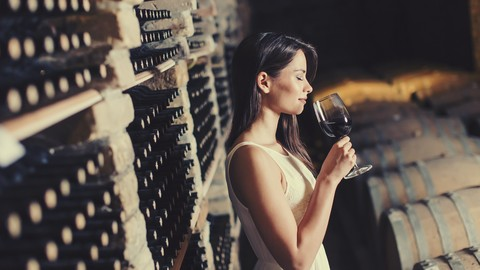 How to Enjoy Wine More AND Spend Less Money Coupon