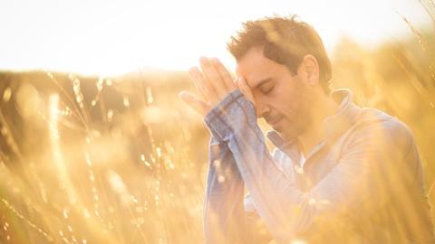 Netcurso-meditation-for-everyone-with-brian-hyman