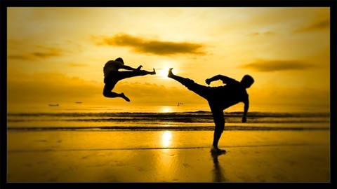 Martial Arts Workout Routines Daily Training & Exercise
