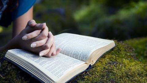 Netcurso-bible-study-pro