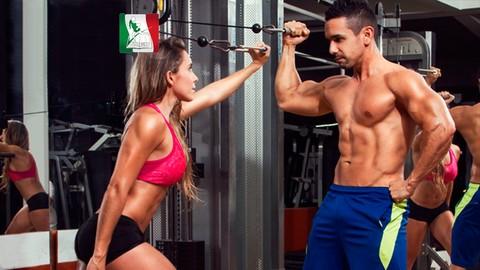 Netcurso-principios-de-entrenamiento-en-el-deporte-y-culturismo