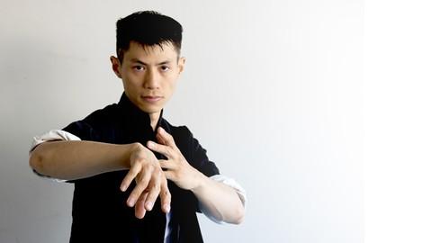 Netcurso-wing-chun-for-beginners-2-learn-martial-arts-kungfu-chum-kiu-form