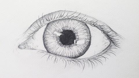 Netcurso-how-to-draw-a-realistic-eye