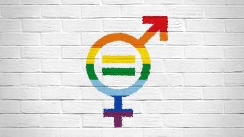Netcurso-gender-equality-and-sexual-diversity