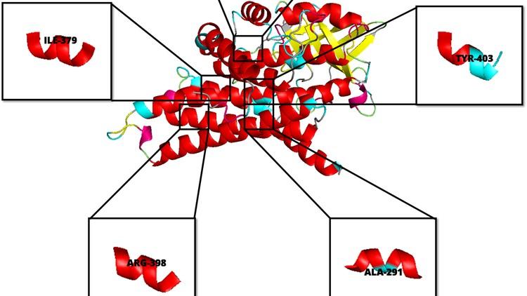 Learn Molecular Dynamics from Scratch