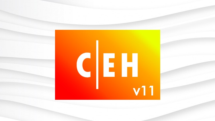 Certified Ethical Hacker CEH v11 Practice Test Coupon