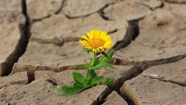 Positivity in August and beyond (despite the virus!)
