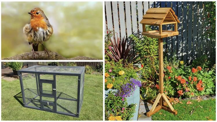 Bumper bird pack, Bird Table, Small aviary & British Birds