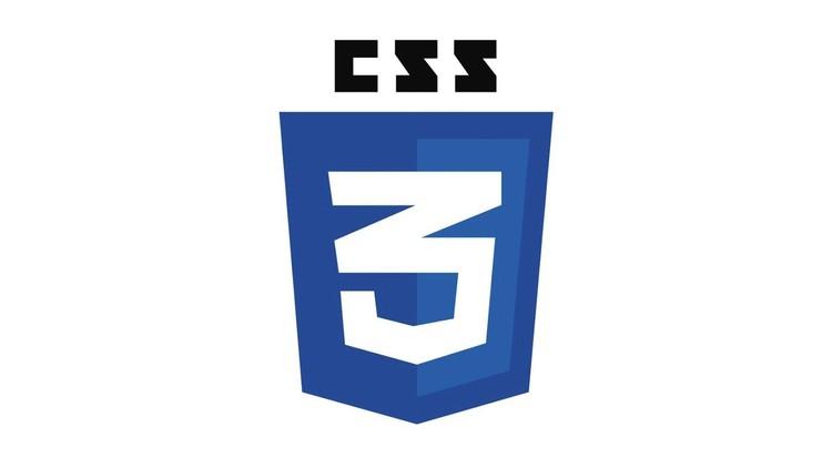 Domina CSS desde Cero Coupon