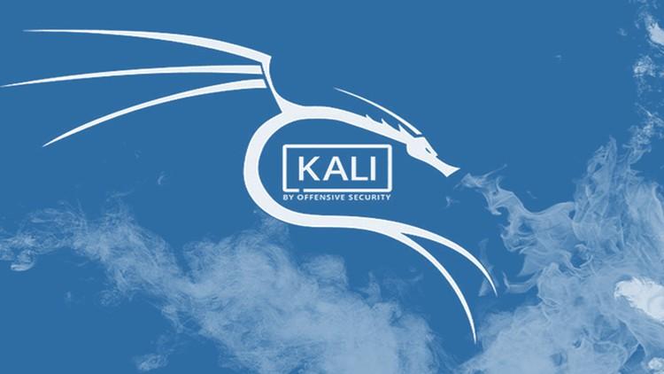 (Kali Linux) 2020.4 Optimization before hacking Coupon