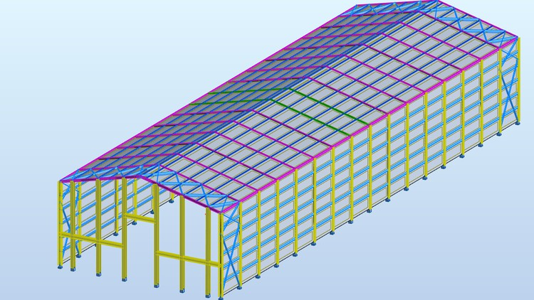 Autodesk Robot Steel Structure Modeling Analysis and Design Coupon