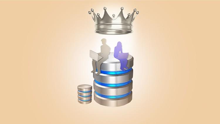 Oracle Veritabanı Yönetimi, Database Administrator(DBA) (1) Coupon