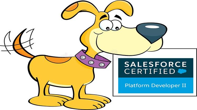 Salesforce Certified Platform Developer II certification Coupon