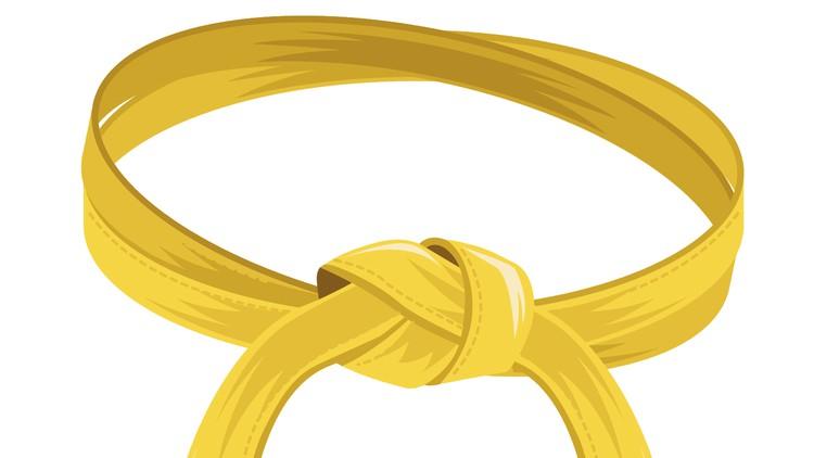 IASSC CSSC : Lean Six Sigma Yellow Belt Certification Exams Coupon