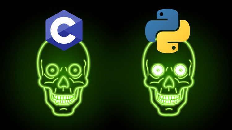 Network Socket Programming In C and Python