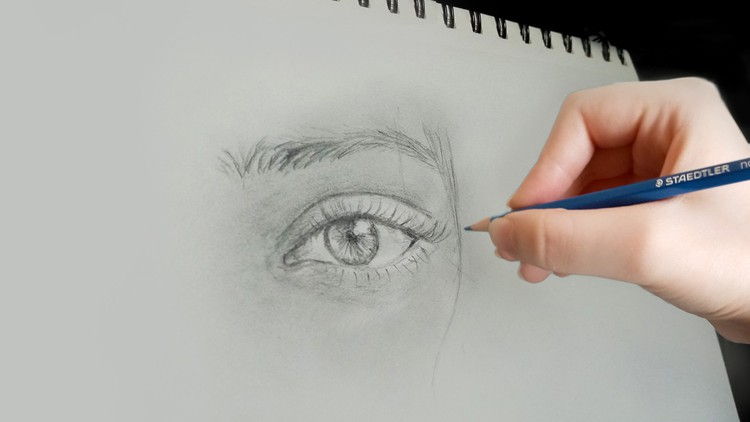 Ultimate & Complete Drawing course : Beginner to Advanced! Coupon