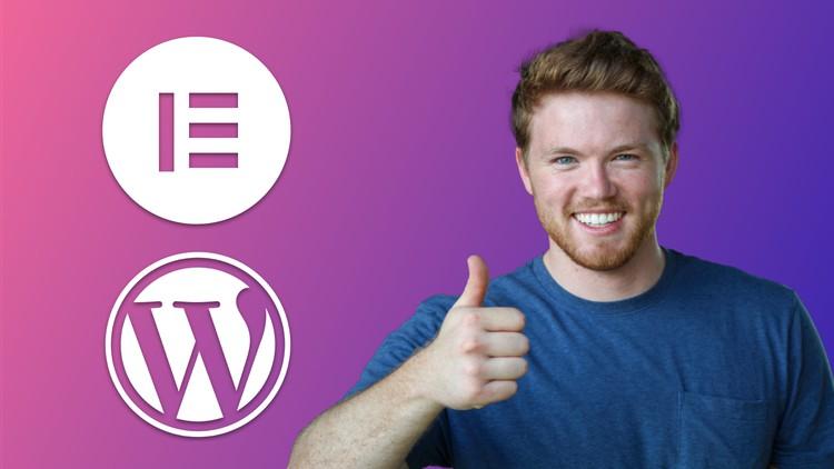 Learn Elementor & WordPress, for Startups & Performers