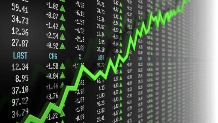 Investing in The Stock Market for Beginners