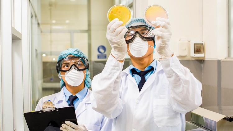 Implementar un laboratorio de microbiología de alimentos Coupon