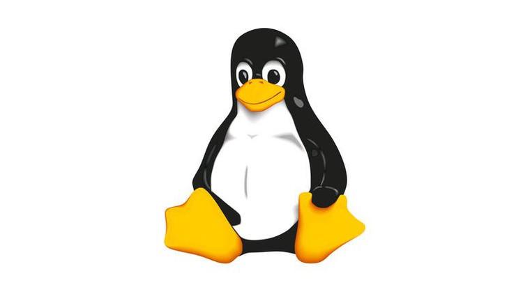 Linux LVM Management