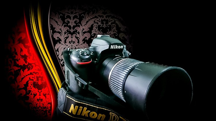 How To Do Macro and Closeup Photography