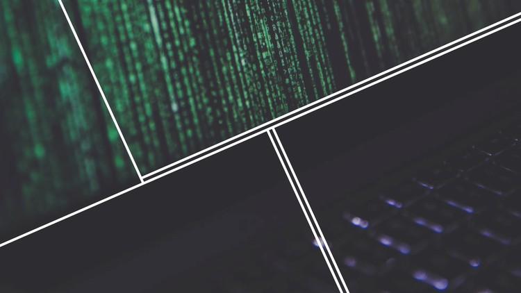 C# & .NET Core for Beginners