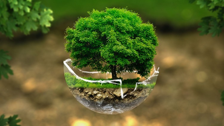 Environment and Ethics: A Basic Course